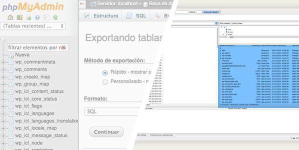 exportar base de datos mysql